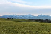 Schneebedeckte Berge Im Herbst, Hügelige Wiesen Im Vordergrund, Allgäu, Bayern