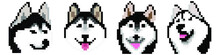 Set Vector Pixel Art Siberian Husky Dogs Isolated On White Background.