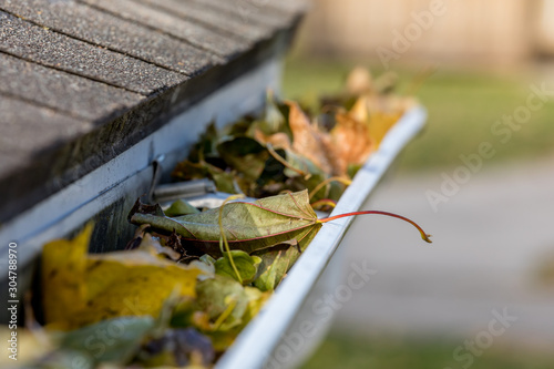 Tela Closeup of house rain gutter clogged with colorful leaves fall from trees in fall