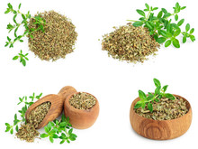 Set Or Collection Dried Thyme ...