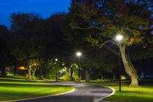 Peaceful Park In The Night With Street Lights, Trees, Green Grass And Pathway.