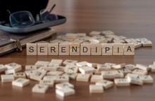 Serendipia La Palabra O Concep...