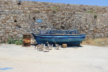 Old Fishing Boat With Ducks