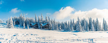 Beautiful Snowy Fir Trees In Frozen Mountains Landscape In Sunset. Christmas Background With Tall Spruce Trees Covered With Snow. Alpine Ski Resort. Winter Greeting Card. Happy New Year