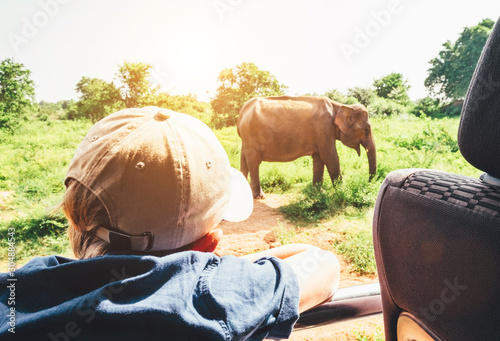 Little tourist boy looking at elephant calf and enjoying his jeep safari activit Poster Mural XXL