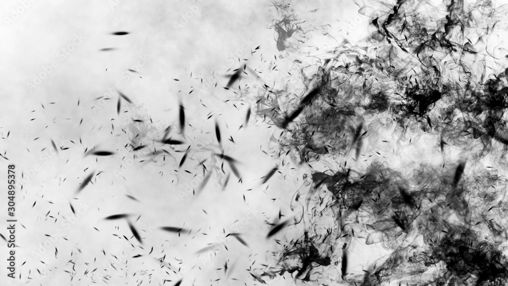 Fototapeta Black fire on isolated background with smoke particles. Texture overlays. Design element.