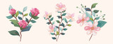 Fototapeta Kwiaty - set of flowers with branches and leafs vector illustration design