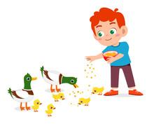 Happy Cute Kid Boy Feeding Cute Duck