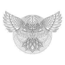 Owl With Mandala Style On Line...