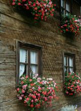 Blumenkästen Am Fenster In Bayern