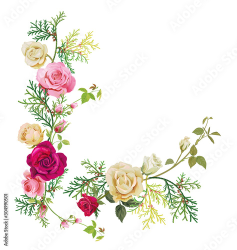 Angular frame: red, white, pink roses, thuja (arborvitae). Corner border for Christmas: flowers, buds, leaves, green twigs, cones on white background, digital draw, watercolor style, vector Wall mural