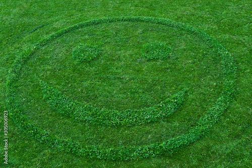 Smiley im Gras Canvas-taulu