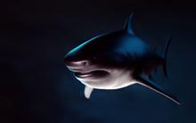 Big Shark Underwater. 3d Render