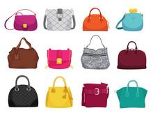 Fashionable Woman Bags Flat Vector Illustrations Set