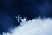 Snowflakes Close-up. Macro Pho...