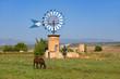 Windmühle auf der Insel Mallorca / Spanien