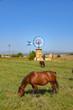 Landschaft mit Windmühle und Pferd auf Mallorca