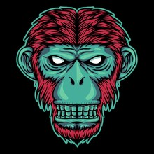 Monkey Head Vector Illustration