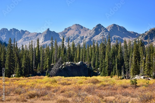 From meadows, to forests, to rugged mountain peaks, the Gore Range leaves little to be desired.