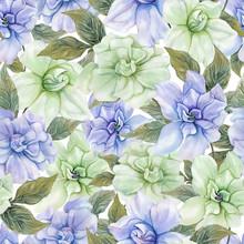 Beautiful Gardenia Flowers Wit...