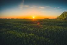 Green Fields, Zeeland, Netherlands