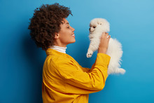 Profile Shot Of Caring Curly Woman Lifts White Spitz Dog Over Face, Admires Lovely Pet, Smiles Broadly, Expresses Love And Care, Isolated Over Blue Studio Wall. Having Nice Time With Favourite Spitz