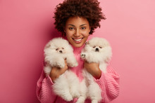 Talented Female Vet Helps Pets To Feel Good, Treats From Different Illnesses. Cheerful Dog Owner Holds Two Fluffy Puppies, Thinks About Food Ration For Spitz. Animals, People, Positive Emotions