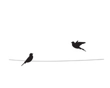 Two Birds Silhouettes On Wire,...