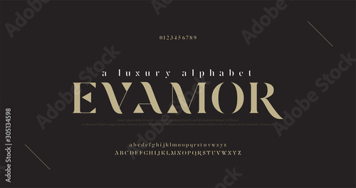 Cuadros en Lienzo Elegant luxury alphabet letters font and number