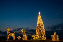 Christmas Tree And Decoration ...