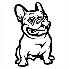 Cute Dogs Vector Annimal Drawing Bulldog Cartoon Illustrator