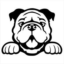 Cute Dogs Vector Annimal Drawing Bulldog Cartoon Outline