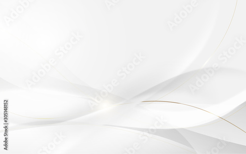 Abstract modern futuristic white wavy and gold lines with blurred light curved l Slika na platnu