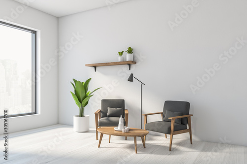 Photo Stands Akt White living room corner with gray armchairs