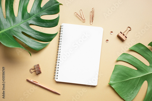Fotografía  Flat lay mock up of monstera leaves with elegant business accessories on color space background