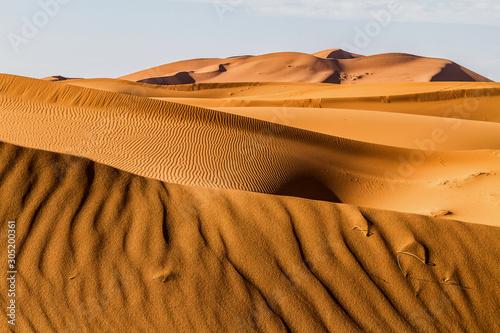 Sanddünen in der Sahara Canvas Print