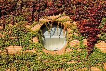 Circular Porthole Window On Wa...