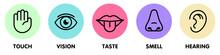 Icon Set Of Five Human Senses....