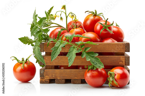 Harvest tomatoes in wooden box with green leaves and flowers Fototapeta