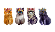 Cute Watercolor Dods And Cats On The White Background