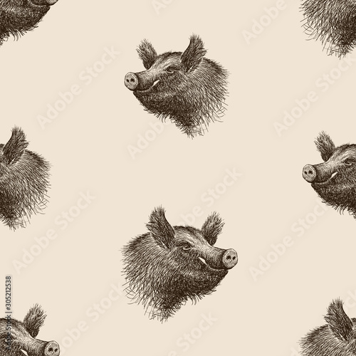 Photographie Seamless background of sketches of wild boar heads