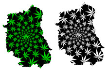 Lublin Voivodeship (Administrative Divisions Of Poland, Voivodeships Of Poland) Map Is Designed Cannabis Leaf Green And Black, Lublin Province Map Made Of Marijuana (marihuana,THC) Foliage....