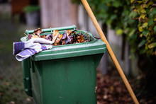 Sweeping The Fallen Leaves From The Garden Ground Into A Green Waste Bin For Recycling During Autumn Fall Season
