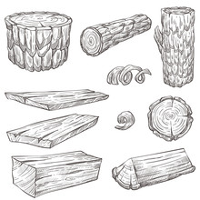 Logs And Stump, Wood And Woode...