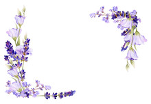 Picturesque Square Frame Of Lavender, Bluebells, Herbs Hand Drawn In Watercolor Isolated On A White Background.Floral Watercolor Illustration.Ideal For Creating Invitations, Greeting And Wedding Cards