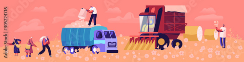 Fototapeta Cotton Harvesting Concept. Male and Female Laborer Characters Picking Fiber on Field and Put into Truck for Shipping and Transportation. Agribusiness Textile Industry. Cartoon Flat Vector Illustration obraz