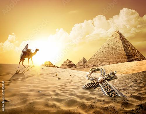 Spoed Fotobehang Kameel Camel near pyramids