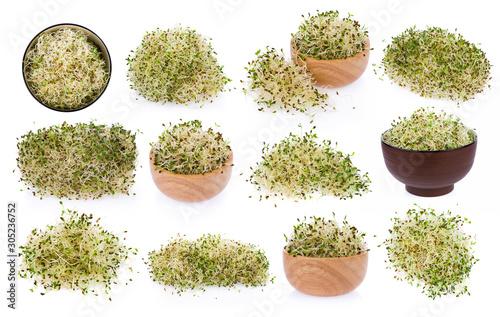 Photo heap of alfalfa sprouts on white background