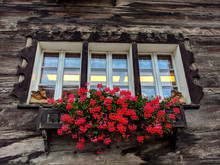 Detail Of A Window With Flowers