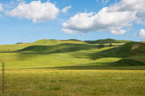 Fotografia Idyllic scene of green grassy hills dotted with light and shadow from fluffy whi